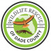 Wildlife Rescue of Dade County